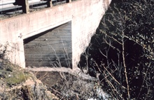 Looking upstream at the culvert