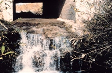 The extreme drop at the culvert was eliminated by the restoration.
