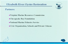 A slides describing the oyster reef seeding project.