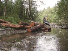 An excavator places logs in the stream to create a log jam.