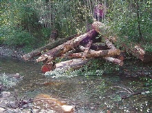 A completed log jam.
