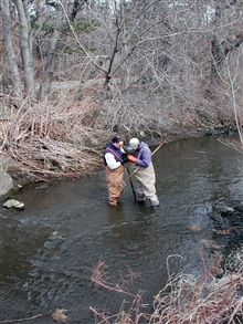 State biologists Brad Chase and Mike Armstrong search for smelt eggs.A 2001 discovery of smelt eggs in the river led to the development of theinitial development of the restoration project.