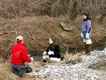 Volunteers work on site with Karen Young (standing) of Salem Sound2000.