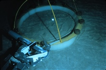 Sub arm deploys a seafloor chamber used to measure respiration.