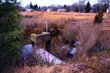 An overview of the marsh and the culvert that restricts water from flowing fromQuivett Creek into the marsh. The preferred restoration choice was to create anopen channel between the two sections of marsh but the homes in the foregroundwould have bee