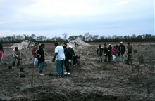 Volunteers plant native hardwood trees along the bank to help stabilize theriparian habitat. Much of Pratt Farm was ditched and drained for agriculture,the restoration work was conducted to return the straight ditched area to anatural stream form wit