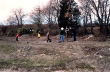 Volunteers along the tree margin work to stabilize and replant the remnant sideof the former ditch.