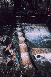 Roy's Dam is in Lagunitas Creek, CA and suffered from a non-functioningfish ladder. Fish were attracted to the current and did not attempt to get upthe ladder. Thus, the ladder impaired their spawning migration. This image showsthe dam and ladder bef