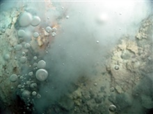 Pacific Ring of Fire Expedition. Close-up of bubbles at the Champagne vent site.