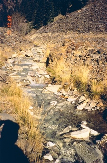 Blackbird Creek, at the mine site. This creek is devoid of life because of thehigh levels of copper leached from the mine. Contamination is fromacid mine drainage containing high levels of copper.