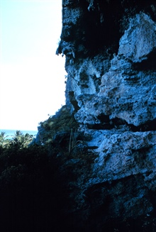 The limestone cliffs at Mona Island