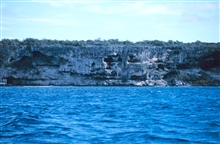 The craggy face of a cliff at Mona Island
