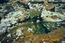 Acid mine drainage, the orange color is from iron precipitate. Blue indicatescopper, the green is algae.