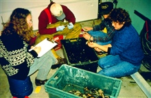 DEM biologists measure lobsters to determine size, frequency and distributionof dead lobsters.