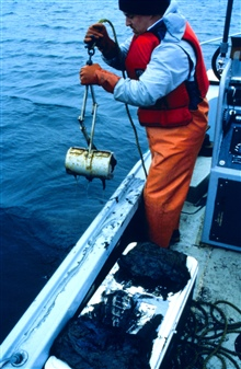 Point Judith Pond, RI DEM worker retrieves a lobster pot used to samplelobsters and determine their exposure to oil.