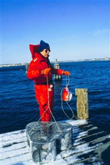 Tracey Collier of NMFS deploys a fish trap to sample for finfish exposure to oil