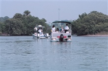 Tampa Baywatch and McDill Airforce Base pontoon boats assist in theclean-up and rescue of entangled birds.