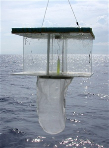 Estuary to Abyss Expedition 2004. A floating light-trap used to capture larvaland juvenile stages of fishes.