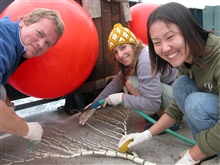 Gulf of Alaska Seamount Expedition.  Peter Etnoyer, Aurelie Shapiro, and Shinobu Okano inspect a large dead bamboo coral specimen brought to thesurface by ALVIN.