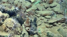 Artifact from Monterrey C shipwreck. Bottles, ballast, small white octocorals,and a grayish appearing anemone.