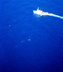 NOAA Ship DAVID STARR JORDAN as seen from MD500 helicopter duringmarine mammal studies in the tropical east Pacific Ocean.  White specs are frommarine mammals breaking the surface of the water.