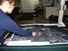 Large scale photo mosaics help scientists relocate sites that have beenpreviously studied.