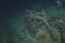 The Green Lantern Wreck, unknown wreck named for lantern artifact.The knees to the windlass are still intact but upside down.