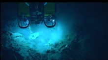 Hercules ROV above rugged topography.  The white sponge directly below theROV looks like a dancing balloon figure.