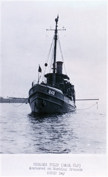 Coast and Geodetic Survey Ship TULIP operating in post-World War II Philippines.