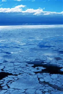 Small ice floes in open water as seen from the bridge of theNATHANIEL B. PALMER.  Ice is melting at time of this picture.