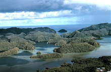 Aerial view of uplifted limestone islands in Palau .  Ca. 1971.