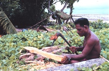 Native Micronesian making a paddle with an adze for his outrigger canoe.