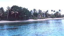 Lagoon side of coral atoll