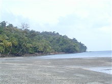 The beach at Isla Gorgona.