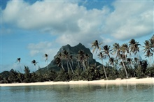 Palm trees and a volcanic plug witha a white sandy beach in the foreground.