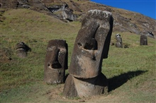 A seemingly inquisitive moai tilts his/her  head while pondering an observationfor centuries.