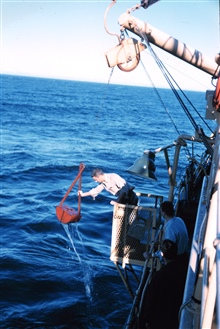 Deploying a Van Vehn grab sampler from the Bureau of Commercial FisheriesShip BROWN BEAR.
