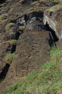An incomplete moai at the Rano Raraku quarry.  The indigenous civilizationcollapsed leaving monuments such as this frozen in place and in time.